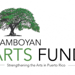 CERF+ Receives Grant from the Flamboyan Arts Fund