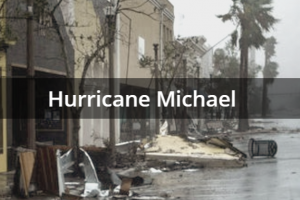 CERF+ Response to Hurricane Michael