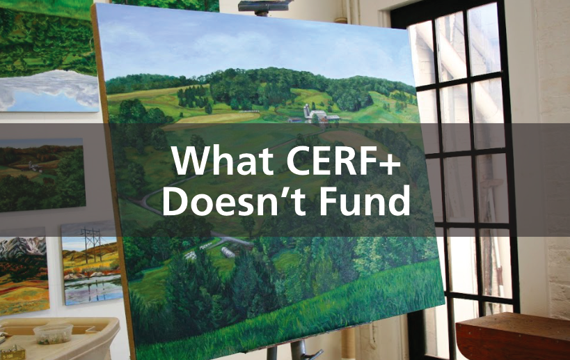 https://cerfplus.org/craft-emergency-relief-fund/what-cerf-doesnt-fund/