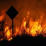 CERF+ Responds to 2020 California Wildfires